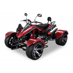 Quad 300 cc