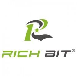 Rich Bit E-bike