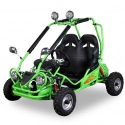 Buggy, Electric (9)